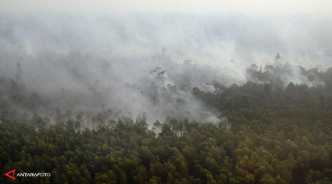8 tips untuk melindungi diri dari risiko gangguan kesehatan akibat kabut asap